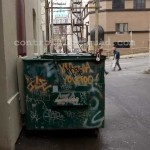 Vancouver Alley Fever