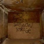 Shamwow Storage Hospital