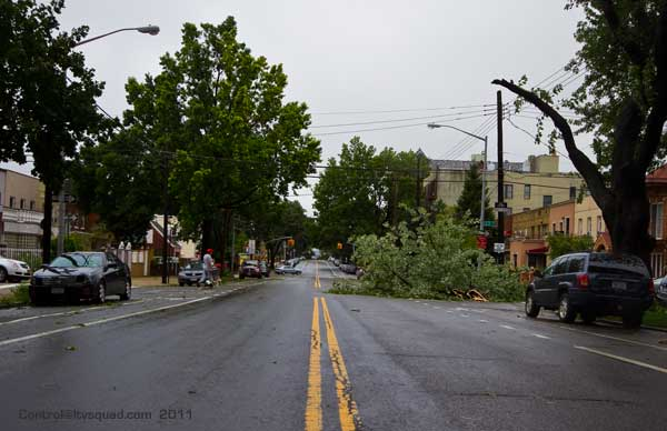 Downed tree limb on an empty 21st street, astoria.